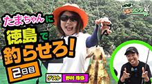 Kanjiでいいカンジ第四弾、徳島で夏イカ!後編